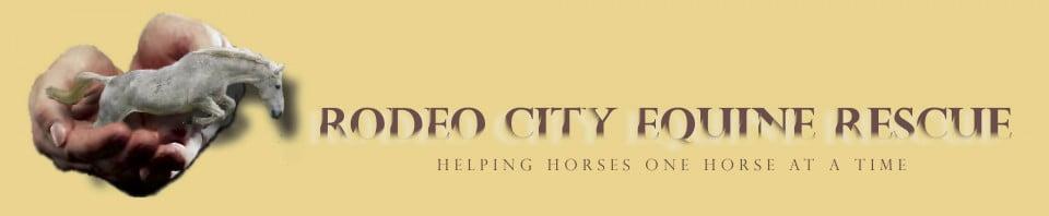 Rodeo City Equine Rescue