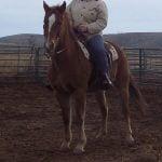 brownie rides 001