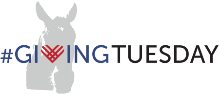 givingtuesday_pony