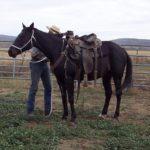three-saddle
